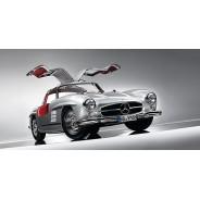 Gull-Wing Doors Mercedes-Benz - Cars