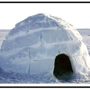 Igloo - Arctic