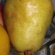 Pear - Fruits