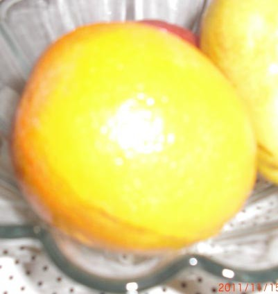 Shiny Orange - Fruits
