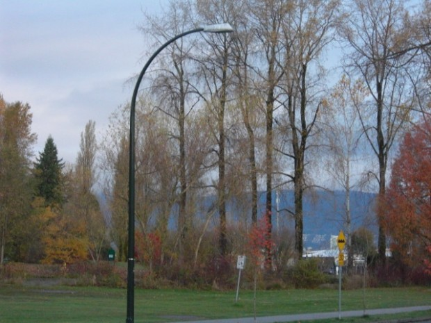 Street Lamp - Lighting