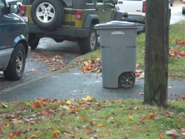 Garbage Bin - Litter