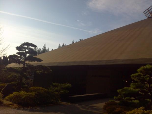 Roof Top - Buildings